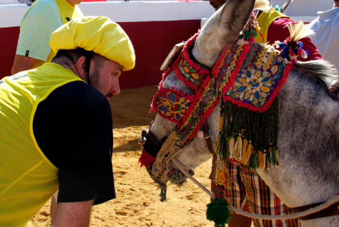 burro-polo-team-building-en-mijas-exploramas-1