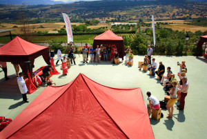 team-building-flamenco-exploramas-2
