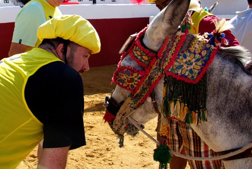 burro-polo-mijas-team-building-exploramas-3