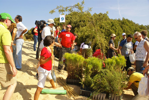 Reforestation for companies | Green Event