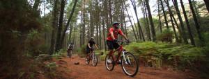 rutas-mountain-bike-aventuras-empresas-exploramas-2