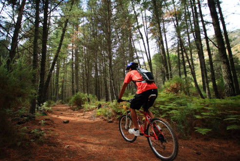 Mountain Bike Routes in Spain