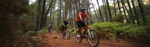 rutas-mountain-bike-aventuras-empresas-exploramas