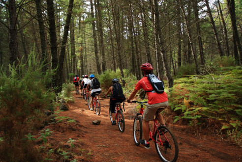 rutas-mountain-bike-aventuras-empresas-exploramas-4
