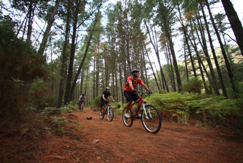 Rutas en Mountain Bike | Experiencia saludable