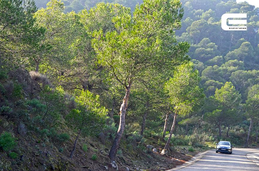 Press-Trip-Malaga-5-Exploramas-Patronato-Turismo-Costa-del-Sol