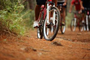 rutas-en-mountain-bike