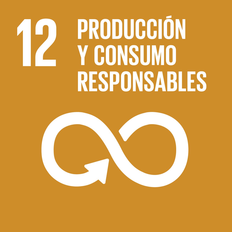 ODS 12 Produccion y consumo responsables