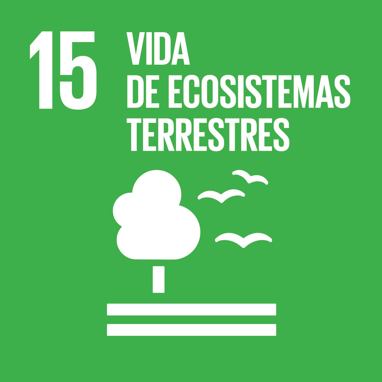 ods objetivos desarrollo sostenible (15)